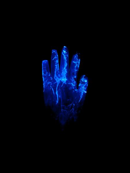 Alivia Magaña, Gloves I, 2018