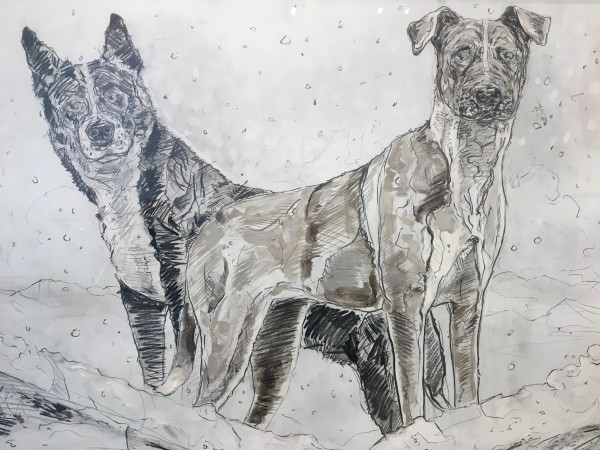 Chaz John, Two Rez Dogs on the Roof, 2018