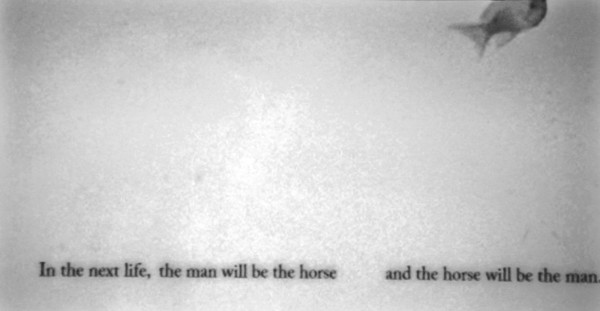 Nicole Wassall, Man and a horse