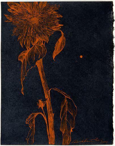 Sarah Horowitz, Golden Sunflower 4, 2007