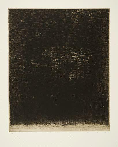Takahiko Hayashi, The Unformed Figure: No Matter Imaging, 2001