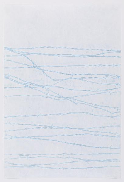 Sarah Horowitz, Wire Fence, 2017