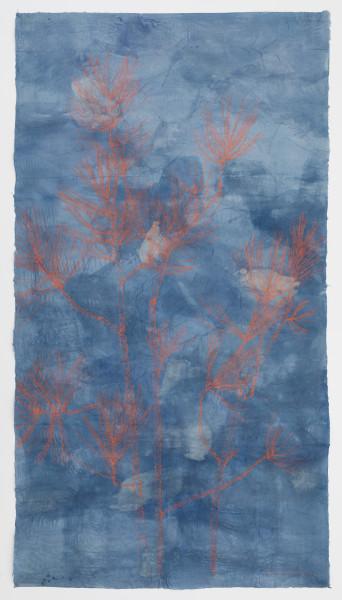 Sarah Horowitz, Vermillion Pines, 2019