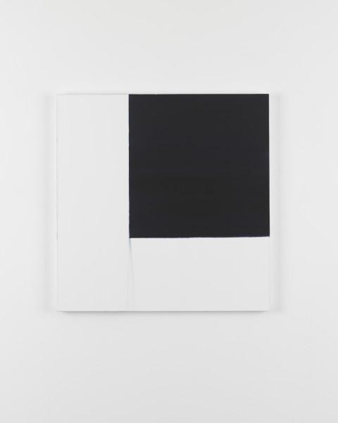 Callum Innes, Exposed Painting Indigo, 2016