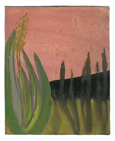 Frank Walter Landscape Series: Pink Sky with Flowering Plant oil on Polaroid card 10 cm x 8.2 cm 32.2 x 29.7 cm framed