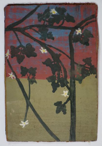Frank Walter, White Flowers on Vines