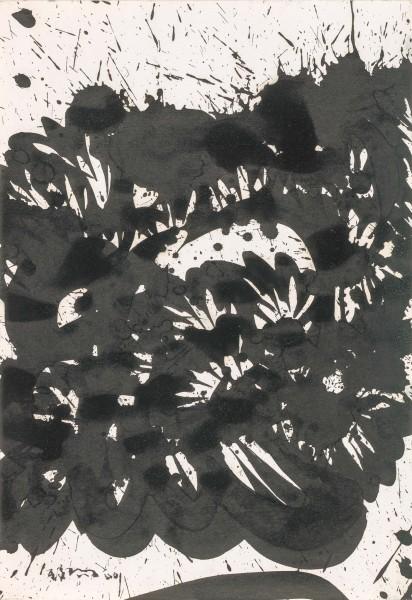 Huang Zhiyang 黄致阳, Morphological Ecology 013 形象生态013, 2000