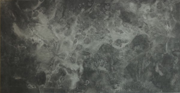 Bingyi 冰逸, ICE Paintings: Lotus Blossom in Ice No.1 冰画:莲1号, 2016