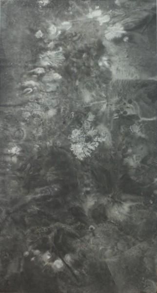 Bingyi 冰逸, ICE Paintings: Lotus Blossom in Ice No.3 冰画:莲3号, 2016