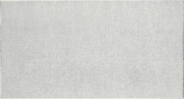 Li Huasheng 李华生, 1301, 2013
