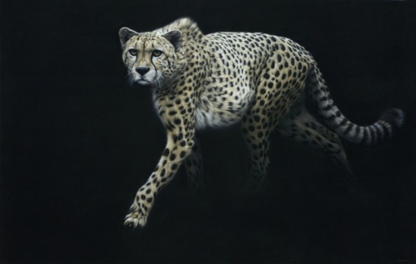 Gary Stinton, Eye to Eye III - Cheetah