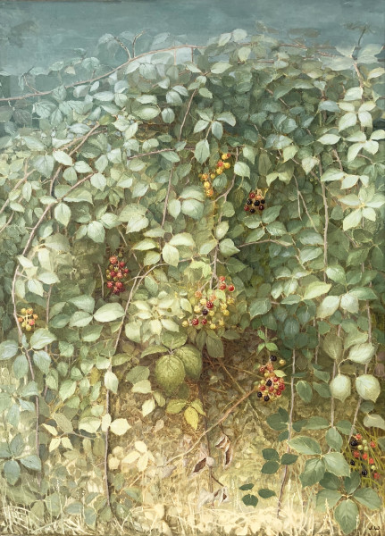 Jane Wormell, Summer Hedgerow