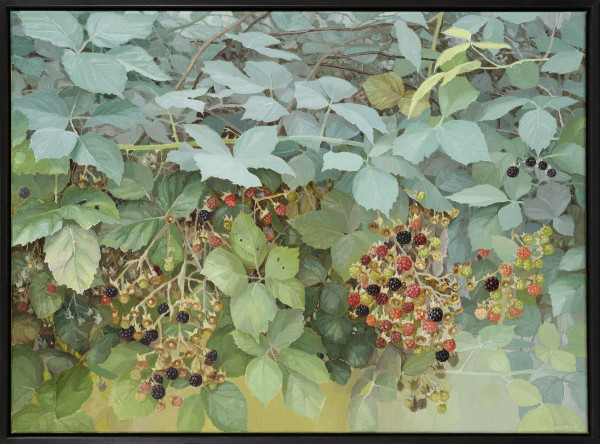 Jane Wormell, Blackberry Hedge, 2020