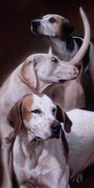Gary Stinton, VWH Foxhounds