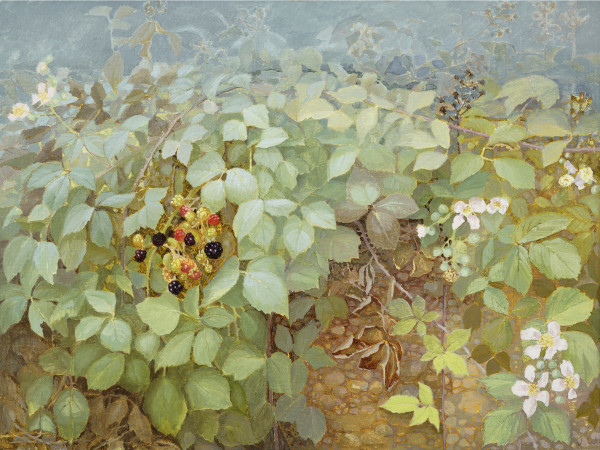 Jane Wormell, Blackberry Hedge III
