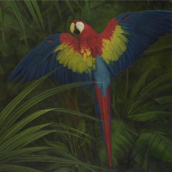 Elizabeth Butterworth, Scarlet Macaw