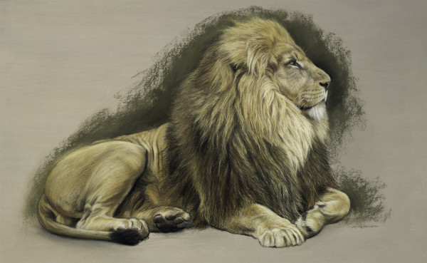 Gary Stinton, Study of Recumbent African Lion I