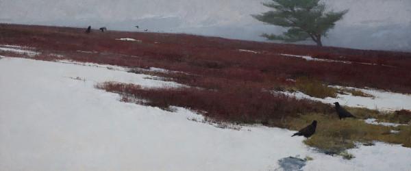 T. Allen Lawson  Winter Blueberries  Oil on panel  20 x 48ins (50.8 x 121.9cm) (artwork size)  31 x 59ins (78.74 x 149.86cm) (framed size)
