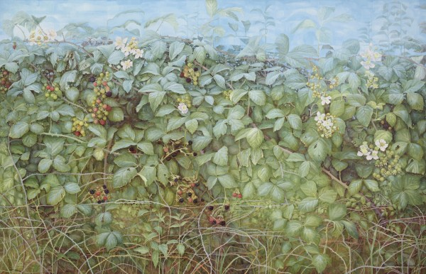 Jane Wormell, Hedgerow 3