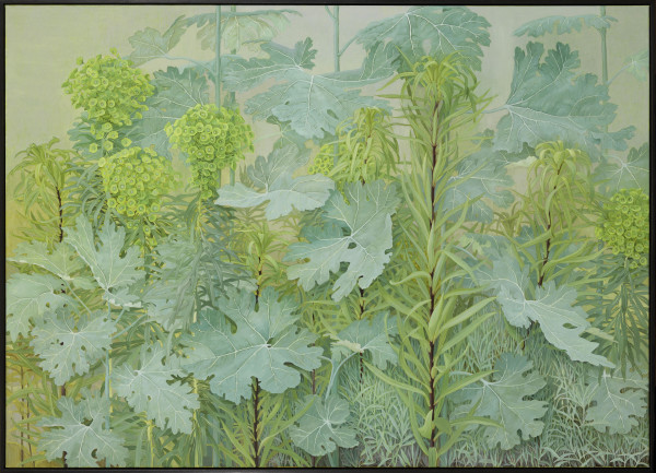 Jane Wormell Euphorbia, Macleaya, lilies, 2020 Oil on linen 39.37 x 55.12ins (100 x 140cm) (artwork size) 40.16 x 55.91ins (102 x 142cm) (framed size)