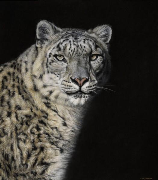 Eye to Eye IV - Snow Leopard