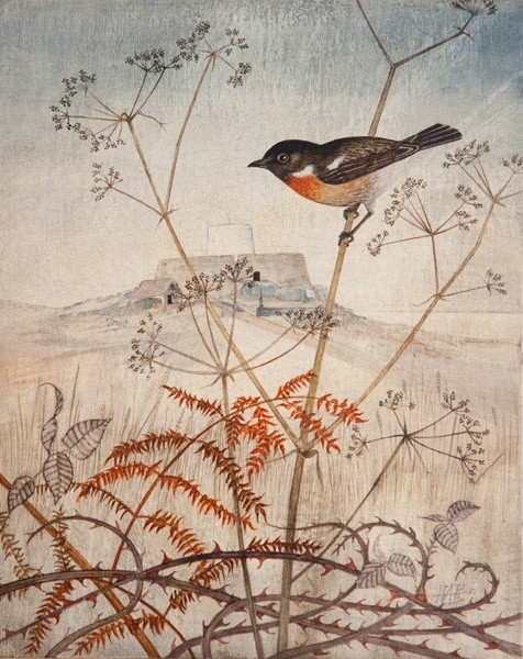 Harriet Bane, Stonechat at Fort Grey