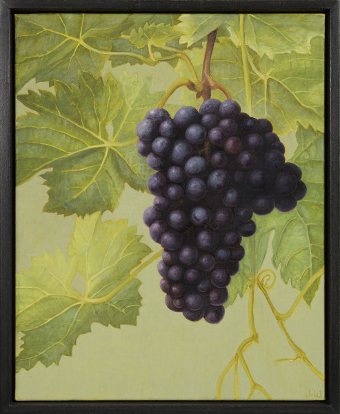 Jane Wormell, Black Grapes, 2020