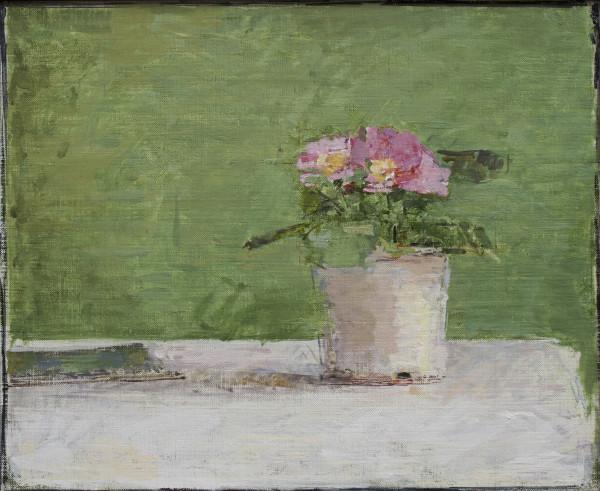 Ben Henriques  Potted Flower  Oil on linen panel  18 x 22ins (45.7 x 56cm)