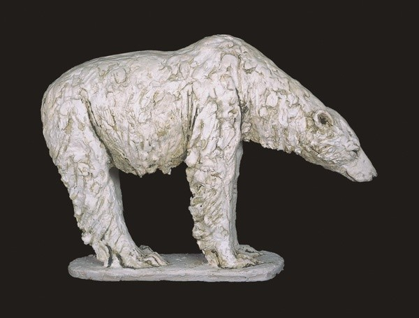 Tanya Brett, Male Polar bear