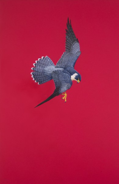 Tim Hayward, Poised - Red