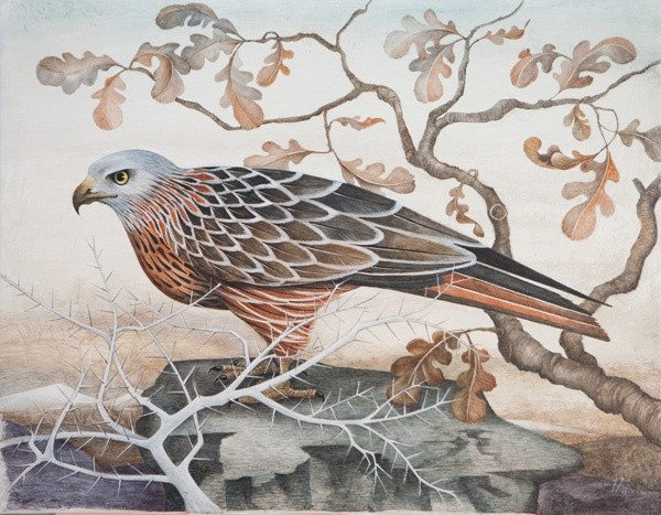 Harriet Bane, The Red Kite