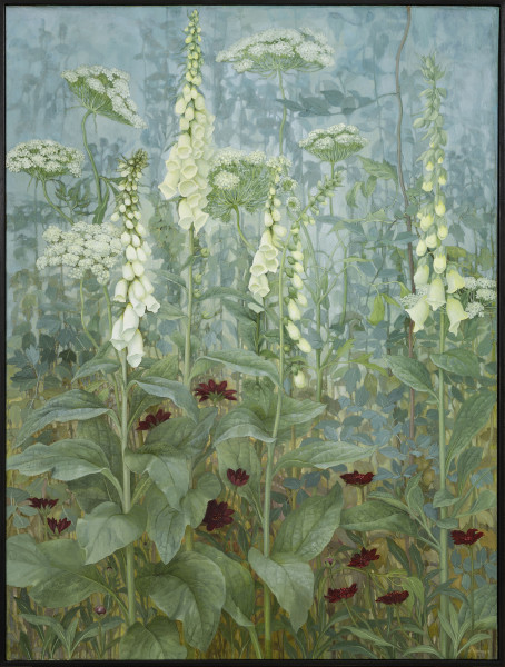 Jane Wormell, Foxgloves, Ammi, Chocolate Cosmos, 2020