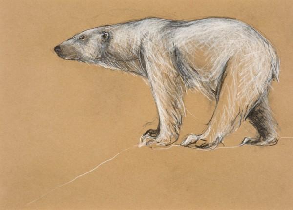 Tanya Brett, Polar Bear Standing