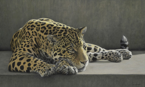 Gary Stinton, Jaguar at Rest