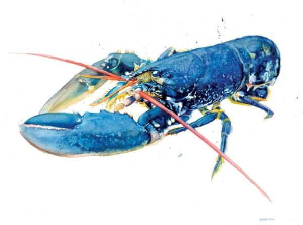 Roland Corbin, Bright Blue Lobster