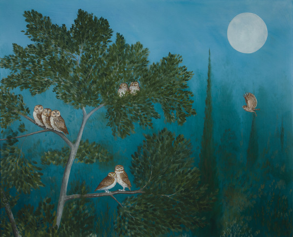 Rebecca Campbell, A Parliament of Owls