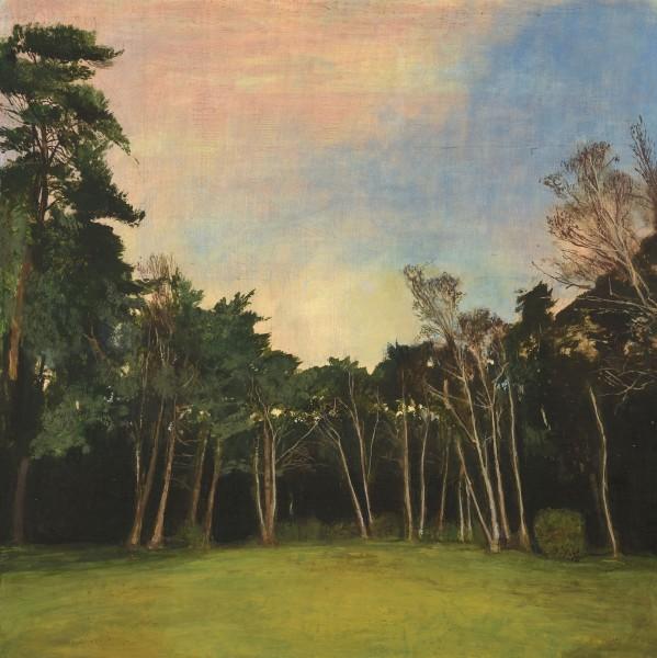 Taha Afshar, The Willows