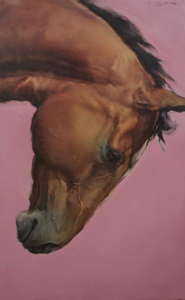 Michael J Austin, Equus I