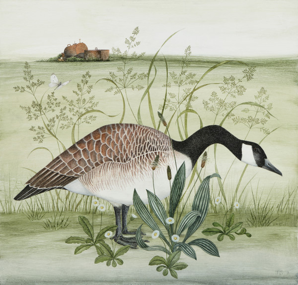 Harriet Bane Canada Goose Watercolour and acrylic on plaster 20 x 21ins (51 x 53.5cm)