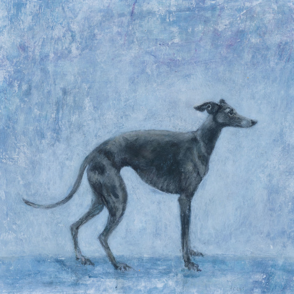 Tracy Rees Blue Whippet Acrylic on paper 7 x 7ins (18 x 18cm)