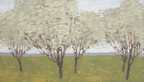 David Grossmann, Five Trees with White Blossoms