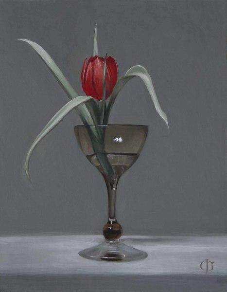James Gillick, Red Tulip (Tulipa linifolia) in a Small Glass