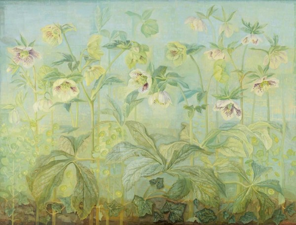 Jane Wormell, Hellebores Euphorbia and Ivy