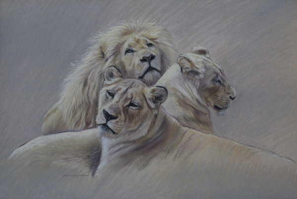 Gary Stinton, Study of White Lion Pride