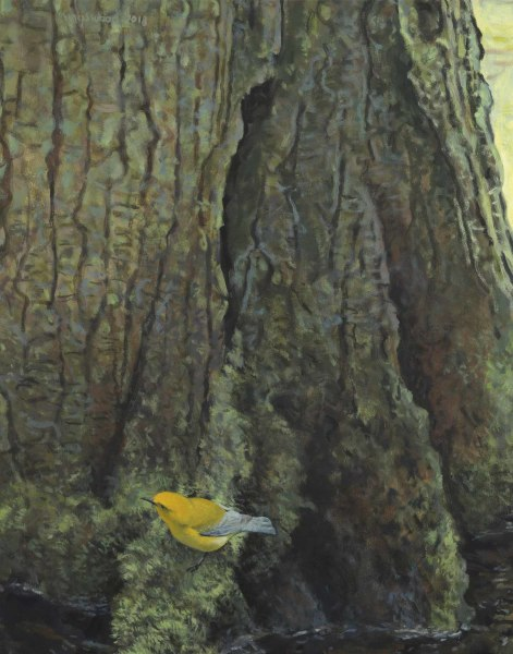 Ron Kingswood  Spring - Prothonotary Warbler  Oil on canvas  28 x 22ins (71.1 x 55.9cm)