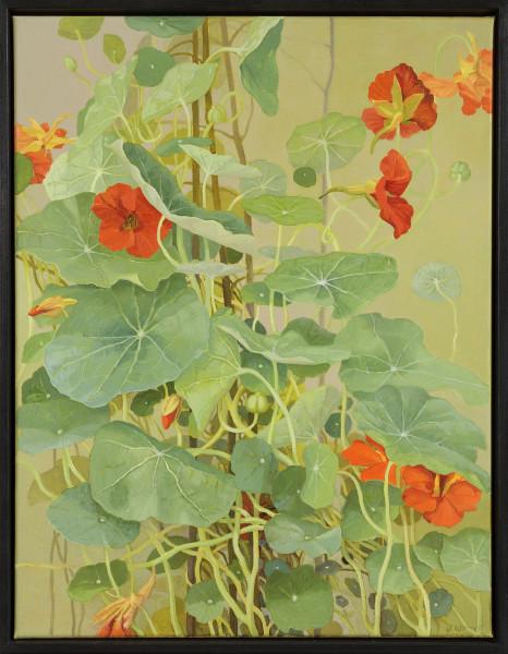 Jane Wormell Nasturtiums, 2020 Oil on linen 17.91 x 14.17ins (45.5 x 36cm) (artwork size) 18.9 x 14.76ins (48 x 37.5cm) (framed size)