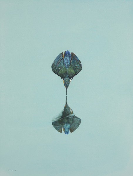 Tim Hayward, Reflection - Turquoise
