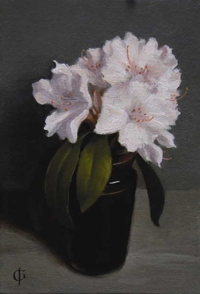 James Gillick, Azaleas