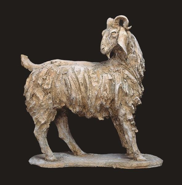 Tanya Brett, Male Nubian Ram