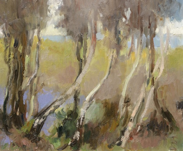 Julia Hawkins, Young Birches in Bluebell Wood, Leith Hill